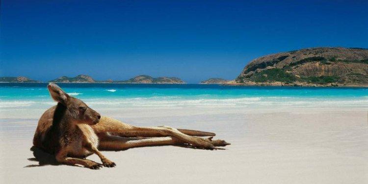 The Great Australian Holiday