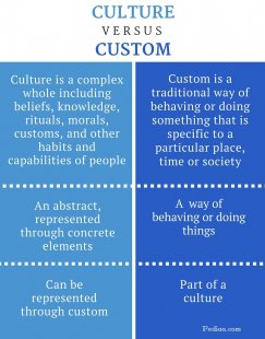 Difference Between Culture and Custom - infographic