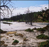 Photo of Murray Darling River Basin